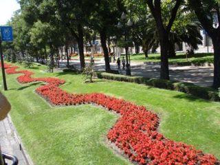 Sidewalk bordered by flowers