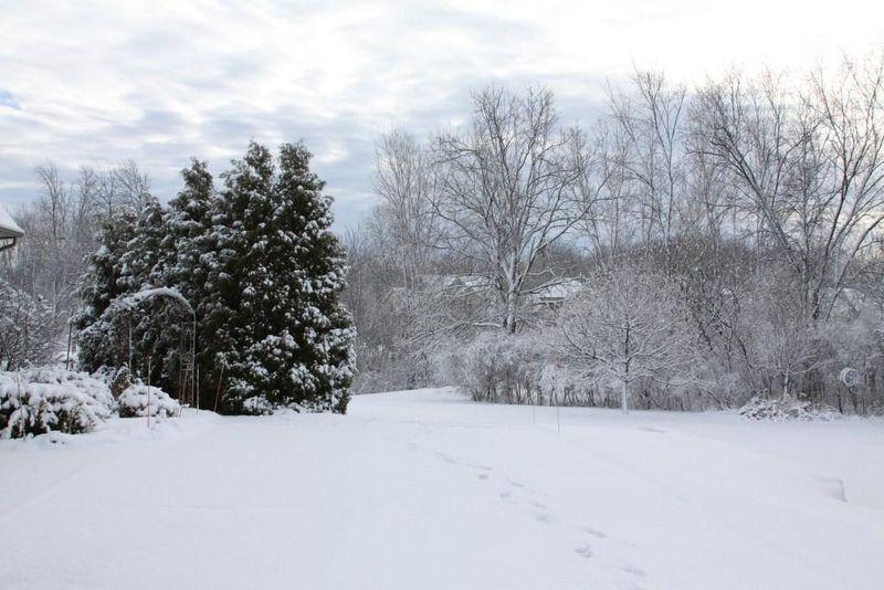 First 2011 winter snow 2