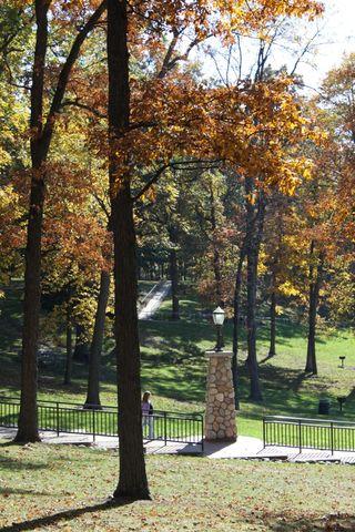 Fall scene 2011 c