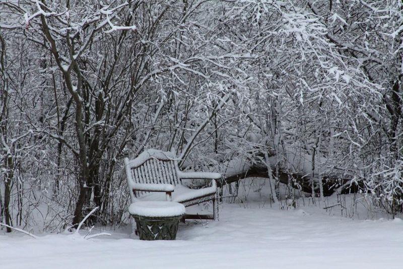 First 2011 winter snow