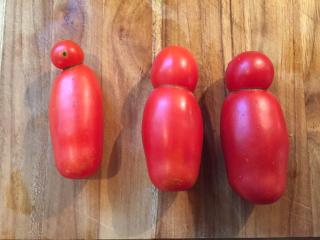 Tomato peopple